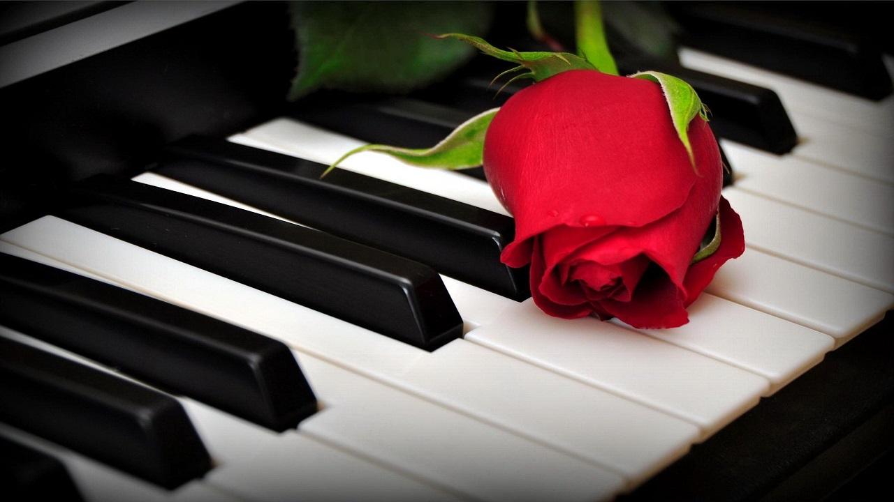 Nhạc không lời Piano hay nhất