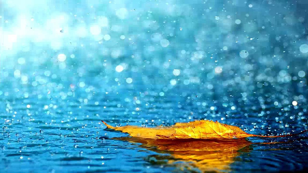 Những bài hát về mưa nhẹ nhàng và lãng mạn nhất
