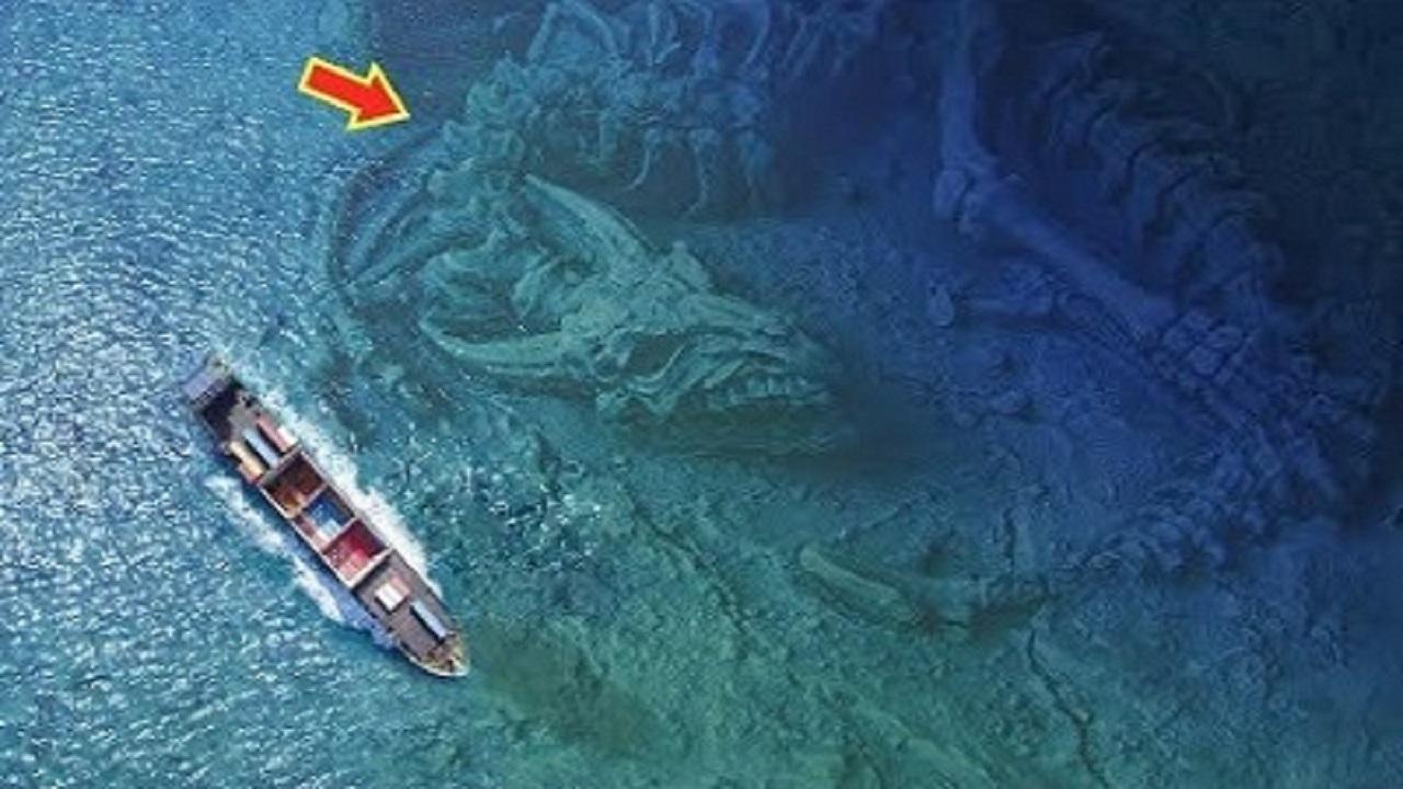 7 thủy quái khổng lồ bất ngờ được phát hiện
