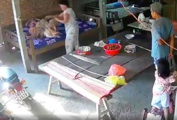 Tin 113 ngày 29/02: Cặp vợ chồng bạo hành mẹ già 88 tuổi dã man bị bắt giam
