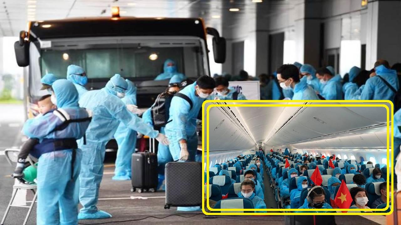 Gần 380 công dân Việt Nam từ Châu Âu và Châu Phi đã trở về nước