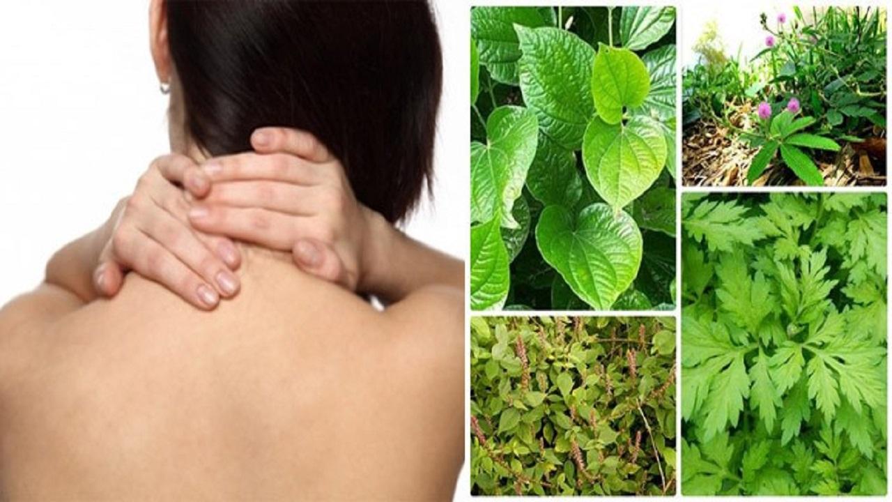 7 cách chữa bệnh từ cây sống đời