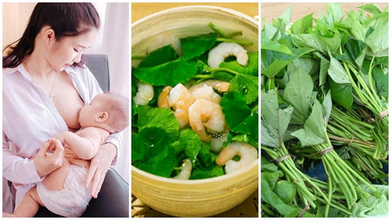 7 loại rau rất tốt cho phụ nữ sau khi sinh em bé