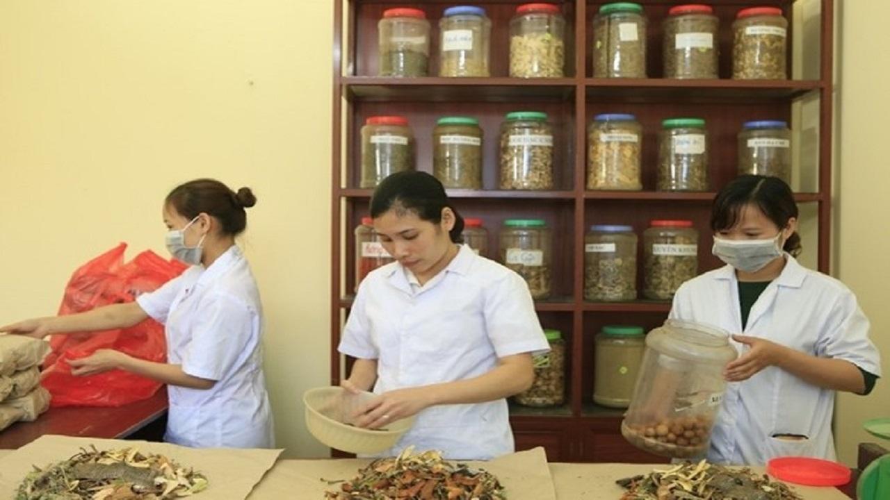 Những bài thuốc dân gian trong Đông Y